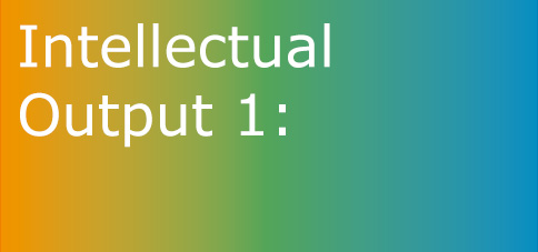 Intellectual Output 1