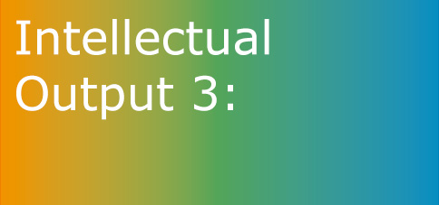 Intellectual Output 3