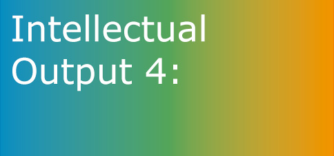 Intellectual Output 4